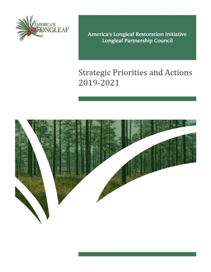 Lpc Strategies And Actions 2019 Photo